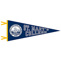 College Seal Flocked Pennant 12X30